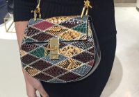 A-Closer-Look-Chloe-Multicolor-drew-Shoulder-Bag